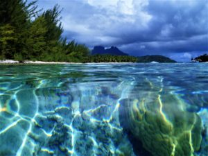 A great fish eye view at the start of drift snorkel in Bora Bora