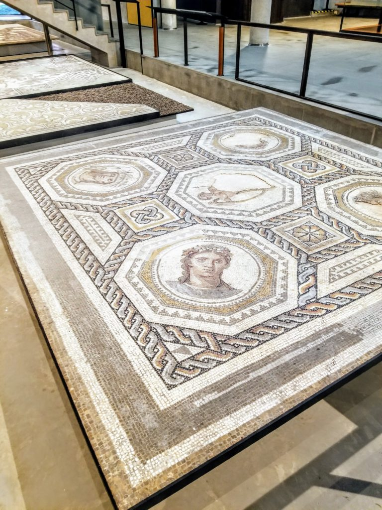 Roman history museum Arles france Susan Wolfson River cruise